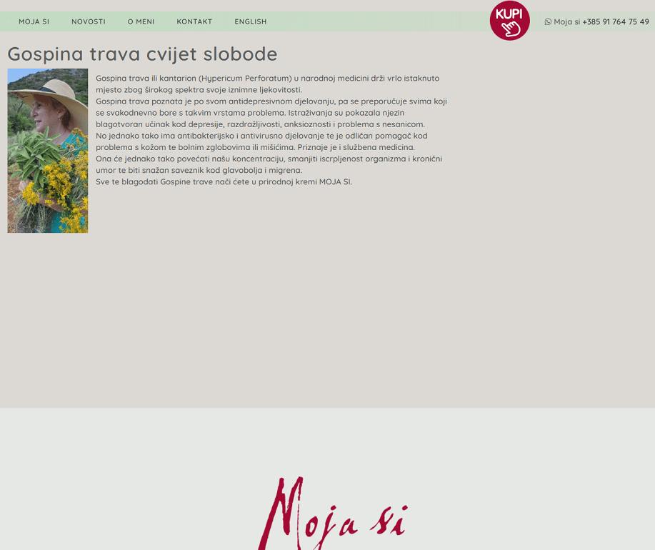 blog članak na temu gospine trave
